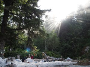 Campers on the West Coast Trail - Two Guys in the Woods
