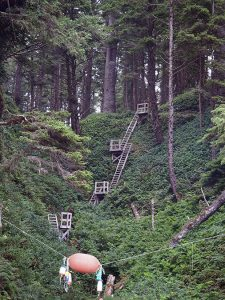 Tsusiat Falls Ladders - West Coast Trail 2015 - Two Guys in the Woods