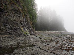 Granite Shelves in the fog - West Coast Trail 2015