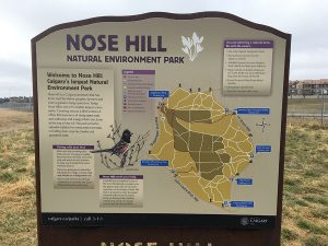 Nose hill sign - two guys in the woods